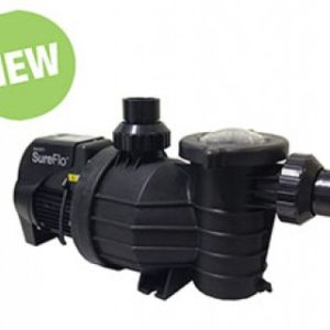 Spa and Swimming Pool Pumps